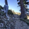 The trail to Ontario Peak.- Ontario Peak