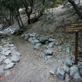 A sign along the Icehouse Canyon Trail marks the fork for the Chapman Trail and Cedar Glen Camp.- Cedar Glen Camp