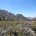 Views of the eastern San Gabriel Mountains from camp.- Cedar Glen Camp