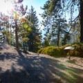 Icehouse Saddle.- Icehouse Saddle via Chapman Trail