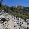 The trail to Cedar Glen Camp has a lot of climbing and switchbacks.- Icehouse Saddle via Chapman Trail