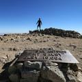 The Mount Baldy summit!- Mount Baldy Summit via Devils Backbone Trail