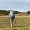 Scrubland that dominates much of the Long Range Traverse.- The Long Range Traverse