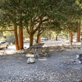 Typical site at Manker Flats Campground.- Manker Flats Campground