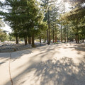 Each driveway serves two campsites.- Manker Flats Campground