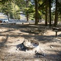 Standard campsite amenities.- Manker Flats Campground