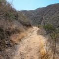 The Rising Sun Trail.- Rising Sun Trail