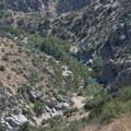 View down to Deep Creek adjacent to Deep Creek Hot Springs.- Deep Creek Hot Springs