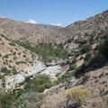 Deep Creek Canyon upriver from Deep Creek Hot Springs.- Lower Deep Creek Canyon + Warm Springs