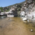 Deep Creek Canyon swimming hole 0.5 miles upstream from Devils Hole.- Upper Deep Creek Canyon to Devils Hole