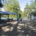 Picnic shelter at Lake Gregory Regional Park.- Lake Gregory Regional Park