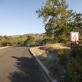 Group campsites at Silverwood Lake State Recreation Area.- Silverwood Lake State Recreation Area