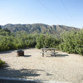 Typical campsite at Mesa Campground.- Mesa Campground