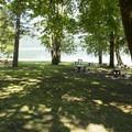 Shaded picnic area at Entrance Bay Day Use Area and Swim Beach.- Entrance Bay Day Use Area + Swim Beach