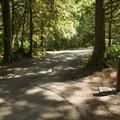Entrance Bay Campground.- Entrance Bay Campground