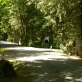 Delta Grove Campground.- Delta Grove Campground