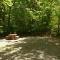 Typical campsite at Delta Grove Campground.- Delta Grove Campground