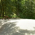 Typical campsite at Maple Bay Campground.- Maple Bay Campground + Day Use Area