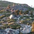 Off-trail terrain up Fall Creek Mountain.- Island Lake via Round Lake Trail
