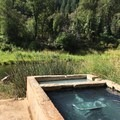 The view while soaking in Feather River Hot Springs.- Feather River Hot Springs