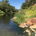 Looking downstream along the Feather River.- Feather River Hot Springs