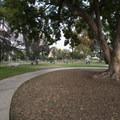 Central Park in Pasadena.- Pasadena Central Park