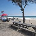 Picnic and barbecue area at Sycamore Cove Beach.- Sycamore Cove Beach