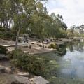 Gwen Moore Lake at Kenneth Hahn State Recreation Area.- Kenneth Hahn State Recreation Area
