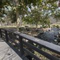 Kenneth Hahn State Recreation Area.- Kenneth Hahn State Recreation Area
