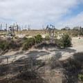 Adjacent Baldwin Hills oil field.- Kenneth Hahn State Recreation Area