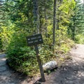 The spur trail to Bench Lake is only about 100 feet long.- Snow Lake via Bench Lake