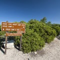 Entrance to Shady Cove Group Campsites.- Shady Cove Group Campsites