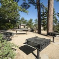 Group Site A at Shady Cove Group Campsites.- Shady Cove Group Campsites