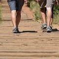 3-foot narrow gauge tracks step by step...2,744 to be approximate.- The Manitou Springs Incline