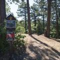 Yellow Post Campsites along Keller Peak Road. - Keller Peak Yellow Post Campsites