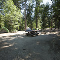 Typical campsite at Dogwood Family Campground.- Dogwood Family Campground