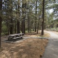 Meadows Edge Picnic Area.- Meadows Edge Picnic Area