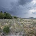 Shoreline of Big Bear Lake from Meadows Edge Picnic Area.- Meadows Edge Picnic Area