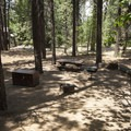 Typical campsite at Pineknot Campground.- Pineknot Campground