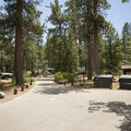 Pineknot Campground.- Pineknot Campground