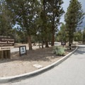 Serrano Campground entrance.- Serrano Campground