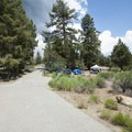 Serrano Campground.- Serrano Campground