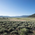 View south of Baldwin Lake, now a meadow, from Doble, California.- Doble Mine