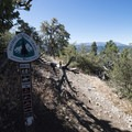 Cougar Crest Trail intersection with the Pacific Crest Trail.- Bertha Peak Hike