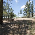 Campsite at Heart Bar Campground.- Heart Bar Campground