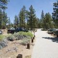 Heart Bar Campground.- Heart Bar Campground