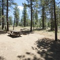 Typical campsite at Wildhorse Family Equestrian Campground.- Wildhorse Family Equestrian Campground