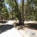 South Fork Campground.- South Fork Campground, Santa Ana River