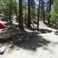 Typical campsite at South Fork Campground.- South Fork Campground, Santa Ana River