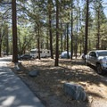 Typical campsite at San Gorgonio Campground.- San Gorgonio Campground